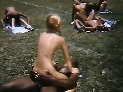 A Pelada do Sexo