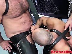 Cocksucking chubby bear bareback pounded