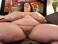 massive bbw tits