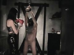boxing the ball ballbusting