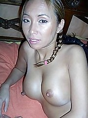Asian Hairy Honey